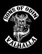 Μπλουζάκι με τύπωμα Sons of odin