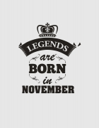 Hoodied φούτερ με στάμπα Legends are born in November